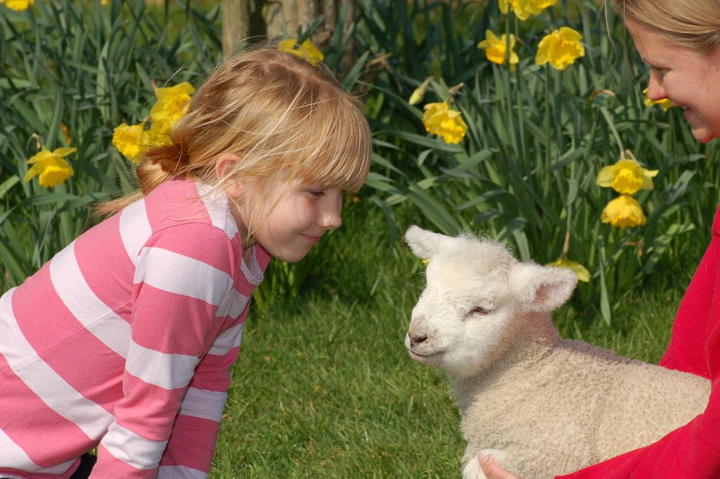easter at fishers farm