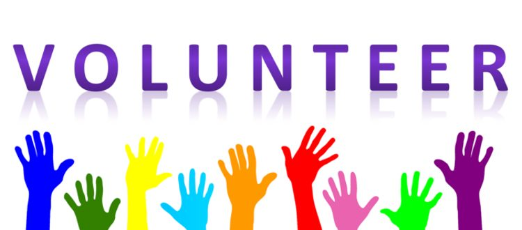 volunteer in horsham