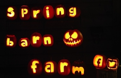 spring barn farm halloween